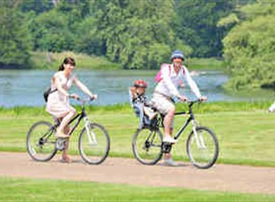 Cyclists on the Holkham Estate