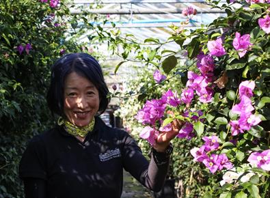 Japanese Horticulturist Aiming to Save Blenheim's Unique Garden Heritage