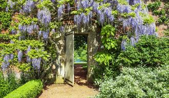 Exclusive Guided Private Walled Garden Tours at Bowood House & Gardens