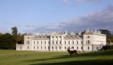 Woburn Abbey and Deer